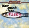 how_much_is_the_fish_s