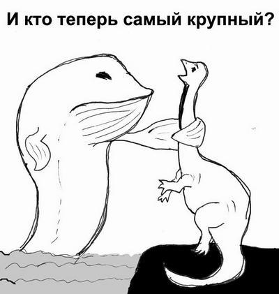 kit_010