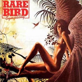 Rare_bird_03