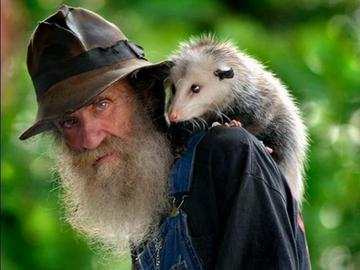 opossum_c01