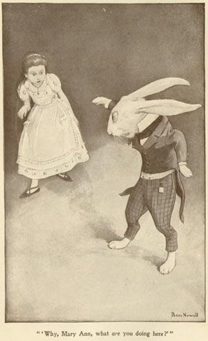 1901_Newell_10
