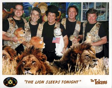 Lion_Sleeps_02