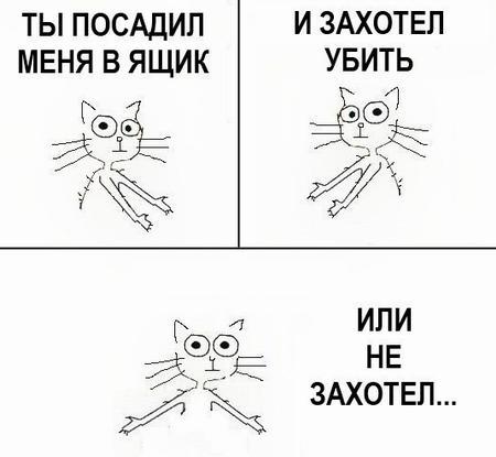kot_9_08_01