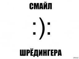 kot_9_08_04