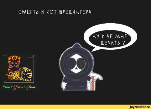 kot_9_08_16