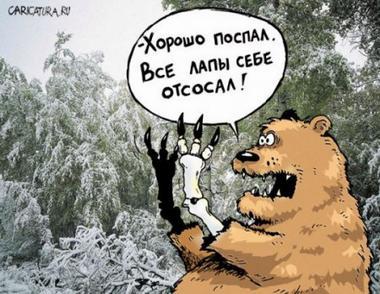 medved_47