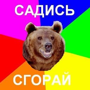medved_59