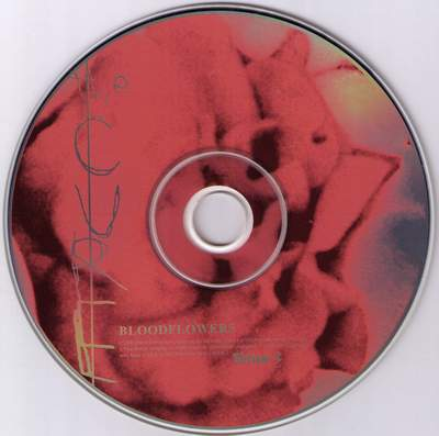 2000_the_cure_Bloodflowers_3