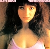 kate_bush_hits_s100