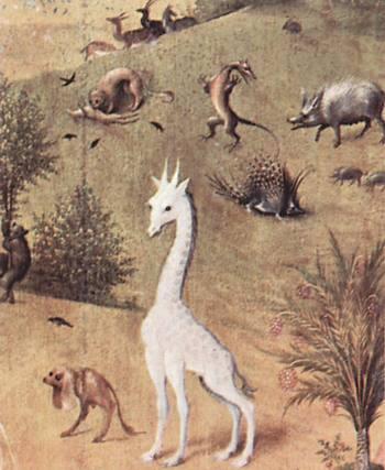 Giraffes_04