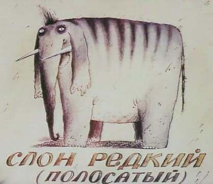 slon_33
