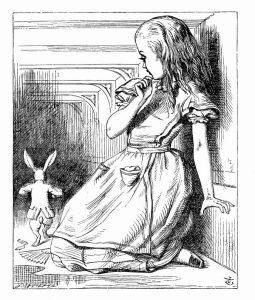 1865_John Tenniel wonderwond_92a