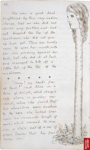 1864 - Lewis Carroll Alice underground_004