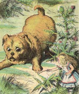 1865 - John Tenniel wonderwond color_12