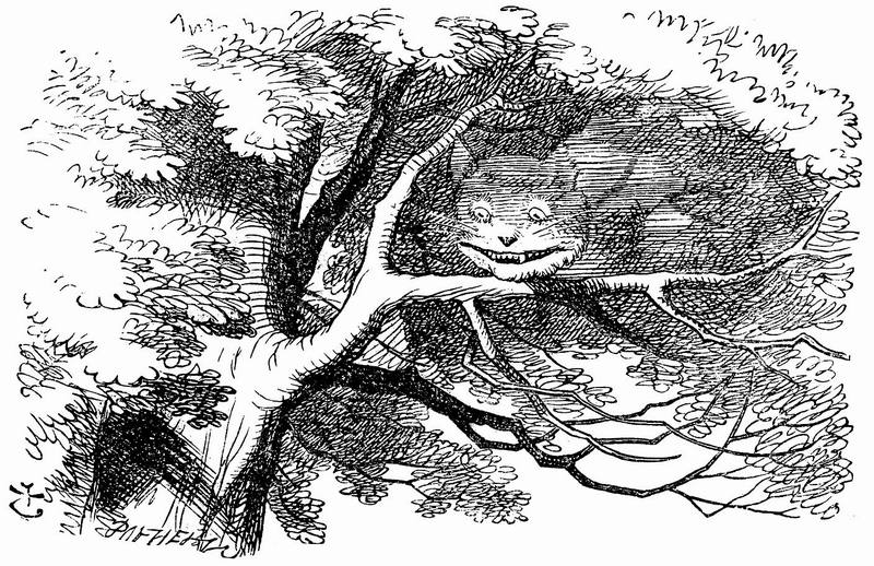 1865_John Tenniel wonderwond_70a