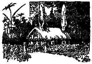 1893 - L J Bridgeman_1900