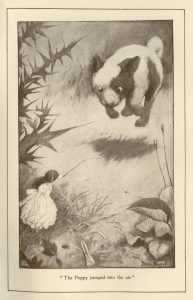 1901 - Peter Newell_wonderland_14