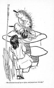 1902 - Fanny Y Cory_32