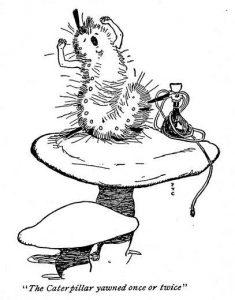 1902 - Fanny Y Cory_33