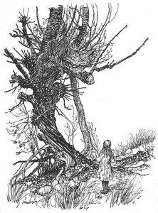 1907 - Arthur Rackham_18