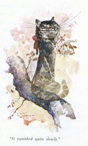 1908 - Harry Rountree_0_12