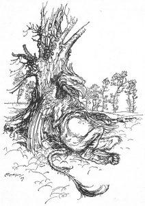 1907 - Arthur Rackham_27