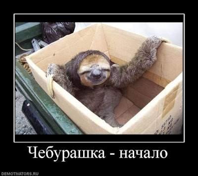 Cheburashka_38
